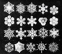 Snowflake Matrix