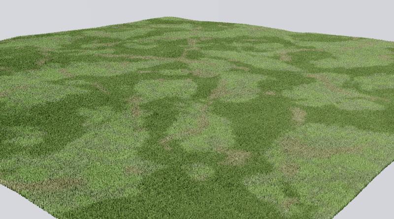 Grass_test.jpg
