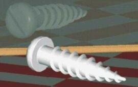 screw.jpg.38773430194494e48ff95148b0bc548d.jpg