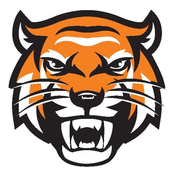 TigerHead_1.jpg